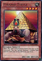 Pyramid Turtle