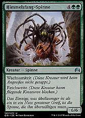 Himmelsfang-Spinne