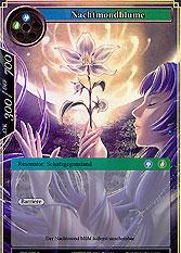 Nachtmondblume