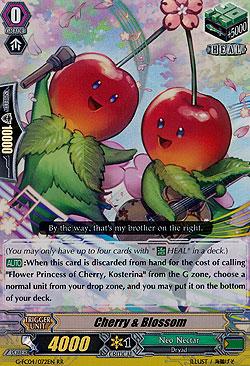 Cherry & Blossom
