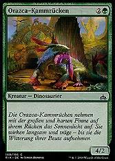 Orazca-Kammrücken