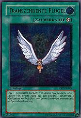 Transzendente Flügel