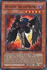 Schwarzflügel - Sirocco die Morgenröte