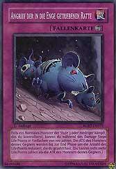 Angriff der in die Enge getriebenen Ratte